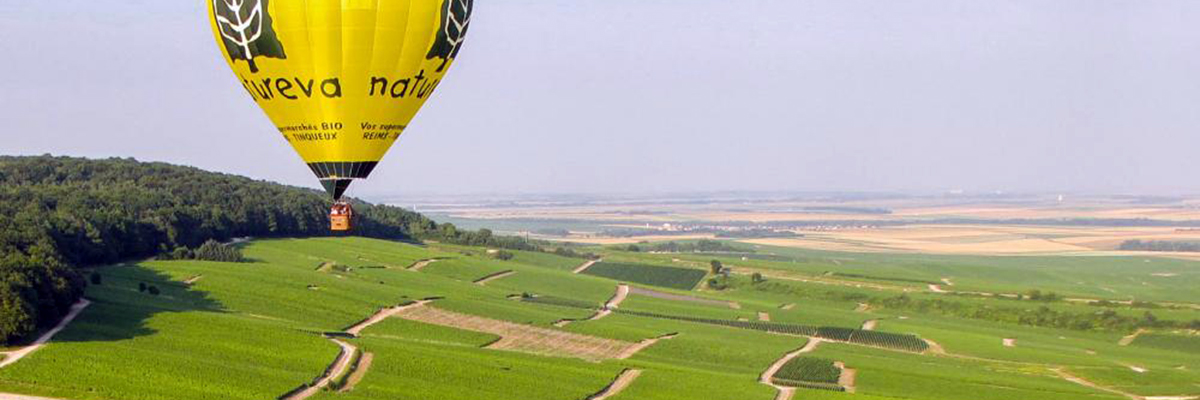 Vol en montgolfière au dessus des vignobles champenois